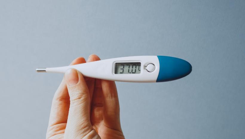 Temperature Self-Check