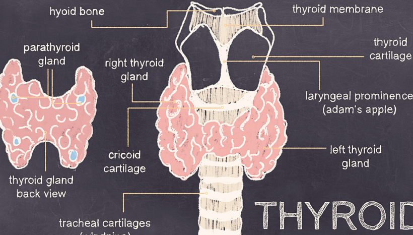 ⚠️ 11 Signs you have a THYROID PROBLEM