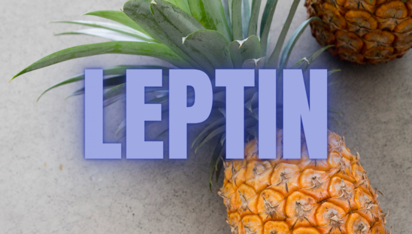 3 Ways To REDUCE Stuck Leptin