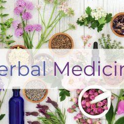Herbs For Better Mental Health